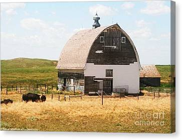 Minden Nebraska Old Farm And Barn Canvas Print by PainterArtist FIN