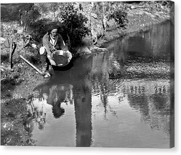 Miner Panning For Gold Canvas Print by Underwood Archives