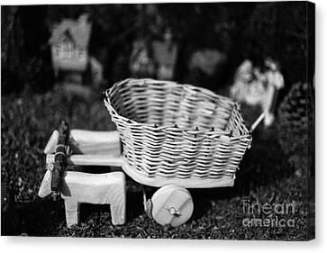 Miniature Oxen-cart Canvas Print by Gaspar Avila