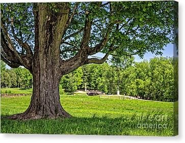 Minute Man National Historical Park  Canvas Print by Edward Fielding