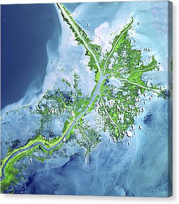 Mississippi River Delta Canvas Print by Adam Romanowicz