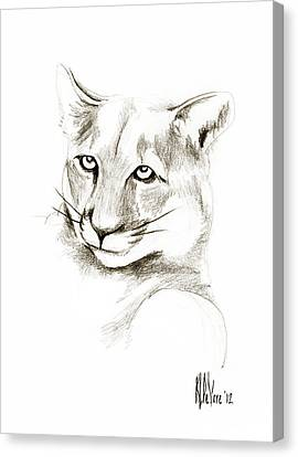 Missouri Mountain Lion II Canvas Print by Kip DeVore