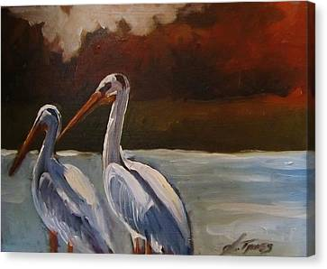 Missouri River Pelicans Canvas Print by Suzanne Tynes