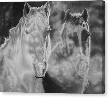 Mist Canvas Print by Glen Powell
