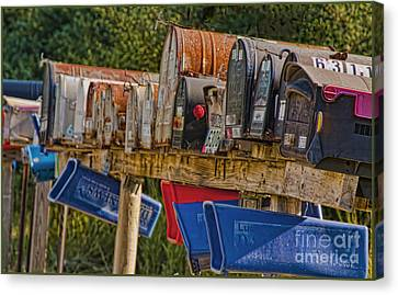 Mister Postman Canvas Print by Timothy J Berndt
