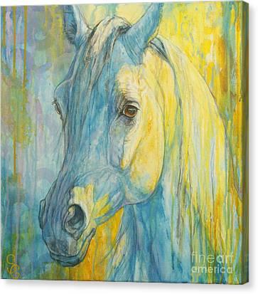 Misterious Blues Canvas Print by Silvana Gabudean