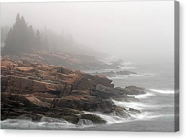 Misty Acadia National Park Seacoast Canvas Print by Juergen Roth