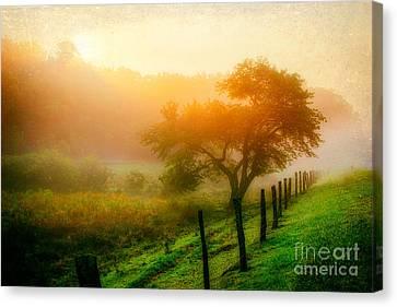 Misty Blue Ridge Sunrise 4177 Canvas Print by Dan Carmichael