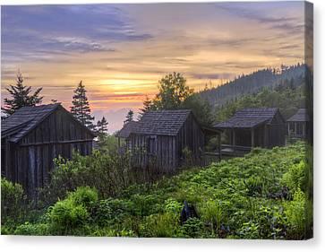 Misty Dawn At Mt Le Conte Canvas Print by Debra and Dave Vanderlaan