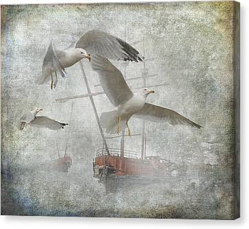 Misty Harbor With Gulls Canvas Print by Randall Nyhof