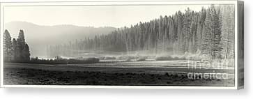 Misty Morning In Yosemite Sepia Canvas Print by Jane Rix
