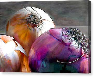 Mixed Onions Canvas Print by Elaine Plesser