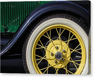 Model A Curves Canvas Print by Dennis Hedberg