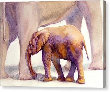 Mom And Baby Boy Elephants Canvas Print by Bonnie Rinier