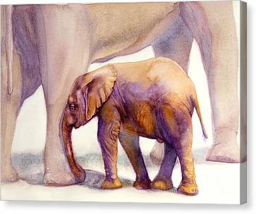 Mom And Baby Boy Elephants Canvas Print by Bonnie Rinier