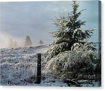 Moment Of Peace Canvas Print by Rory Sagner
