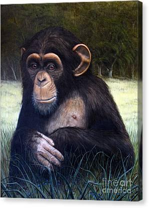 Mona Chimp Canvas Print by Joey Nash