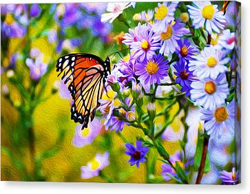 Monarch Butterfly 4 Canvas Print by Tracy Winter