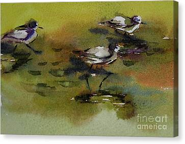 Monday Evening Sandpipers  Canvas Print by Julianne Felton