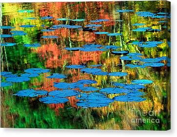 Monet Reflection Canvas Print by Inge Johnsson