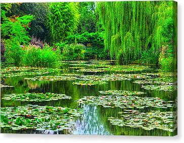 Monet's Lily Pond Canvas Print by Midori Chan
