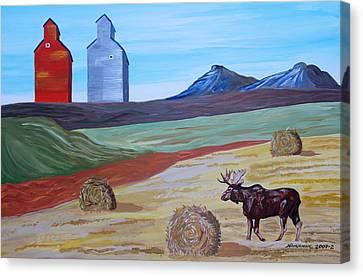 Montana Moose Canvas Print by Mike Nahorniak
