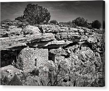 Montezumas Well Canvas Print by Gregory Dyer