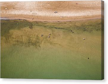 Montrose Beach Dog Park Canvas Print by Adam Romanowicz