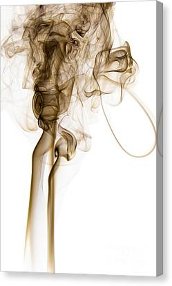 Abstract Vertical Coffee Brown Mood Colored Smoke 04 Canvas Print by Alexandra K