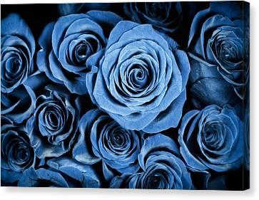 Moody Blue Rose Bouquet Canvas Print by Adam Romanowicz