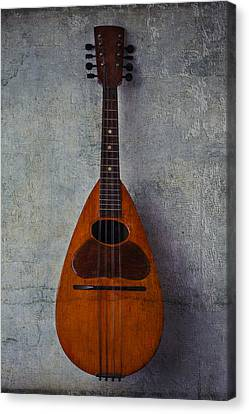Moody Mandolin Canvas Print by Garry Gay