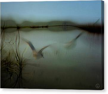 Moody Morning Canvas Print by Gun Legler