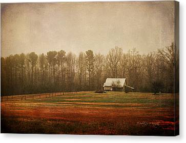 Moody Morning Stillness Canvas Print by Paulette B Wright