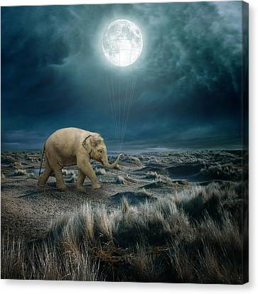 Moon Canvas Print by Beata Bieniak