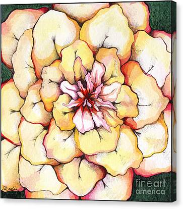 Moon Flower Out Of The Bloomers And Onto The Bloom Canvas Print by Shadia Zayed