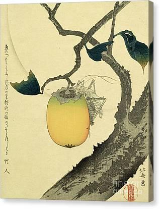 Moon Persimmon And Grasshopper Canvas Print by Katsushika Hokusai