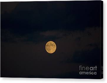 Moon Rising 07 Canvas Print by Thomas Woolworth