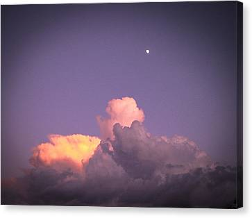 Moon Speck Canvas Print by Robert J Andler
