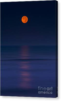 Moonar Canvas Print by Marco Crupi