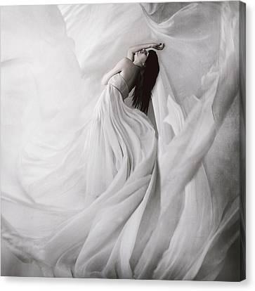 Moondance Canvas Print by Anja Matko