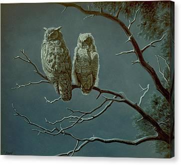 Moonlight Watchers Canvas Print by Paul Krapf