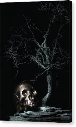 Moonlit Skull And Tree Still Life Canvas Print by Tom Mc Nemar