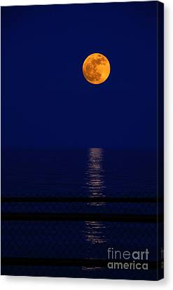 Moonrise Over Water Canvas Print by Charline Xia