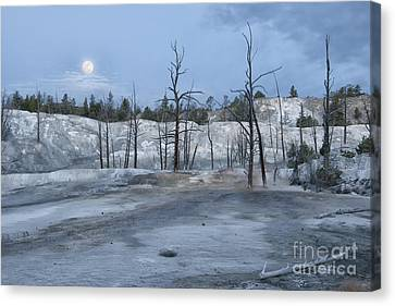 Moonset At Mammoth Terrace-yellowstone Canvas Print by Sandra Bronstein