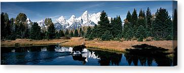 Moose & Beaver Pond Grand Teton Canvas Print by Panoramic Images