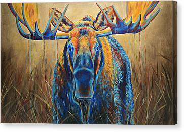 Moose Marsh Canvas Print by Teshia Art