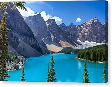 Moraine Lake - Banff National Park Canvas Print by Matt Dobson