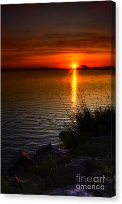 Morning By The Shore Canvas Print by Veikko Suikkanen
