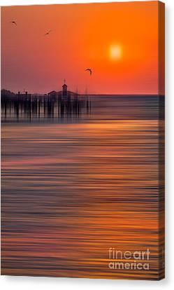 Morning Flight - A Tranquil Moments Landscape Canvas Print by Dan Carmichael