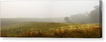 Morning Fog Canvas Print by Barbara Smith